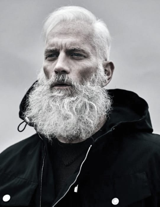 Excellent 60 Grey Beard Styles For Men Distinguished Facial Hair Ideas Schematic Wiring Diagrams Phreekkolirunnerswayorg