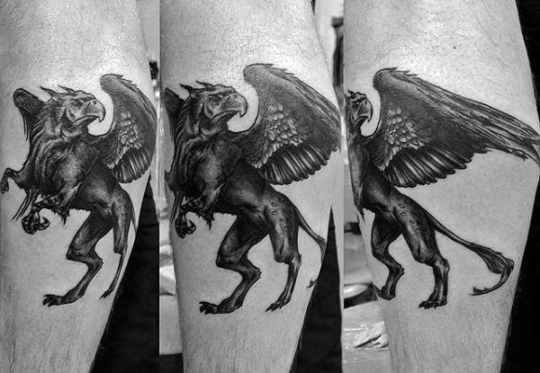 Guy With Griffin Tattoo On Leg Calves