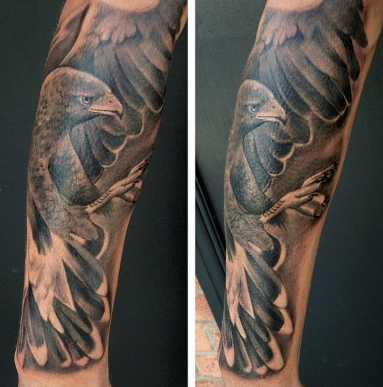 Guy With Realistic Majestic Hawk Half Sleeve Tattoo