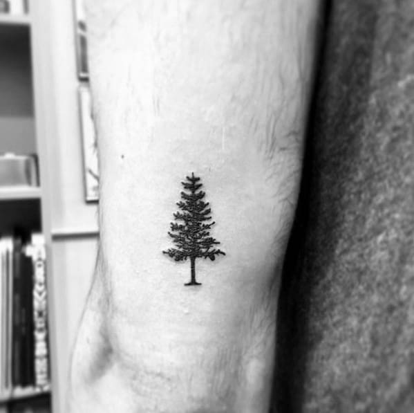 60 Small Tree Tattoos For Men