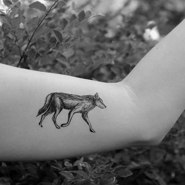 Guys Coyote Small Inner Arm Tattoos