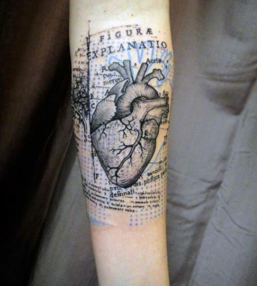 Guys Heart Tattoo In Anatomical Drawing Style On Forearm