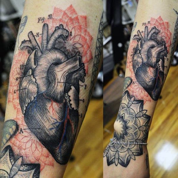 Guys Heart Tattoo In Style Of Anatomical Drawing On Forearm