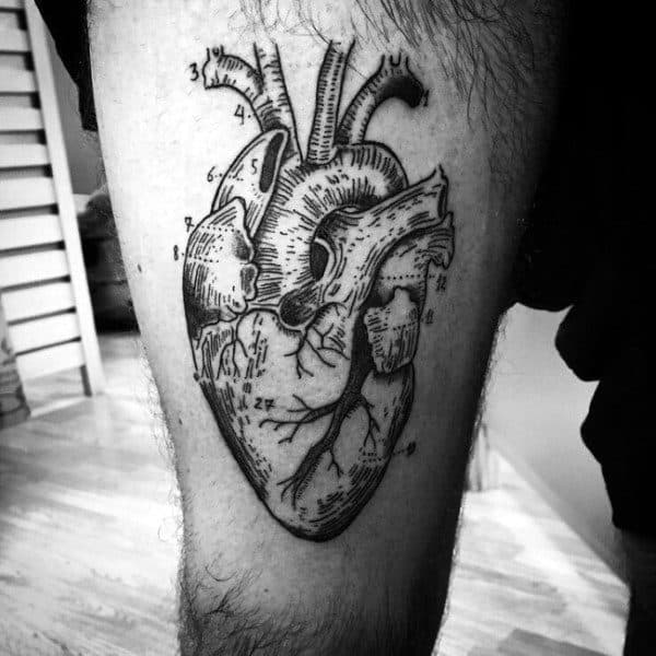 Guys Heart Tattoo With Anatomical Labels On Thigh