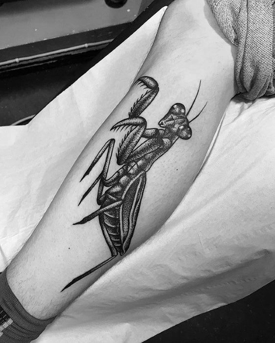 Guys Praying Mantis Tattoos On Leg