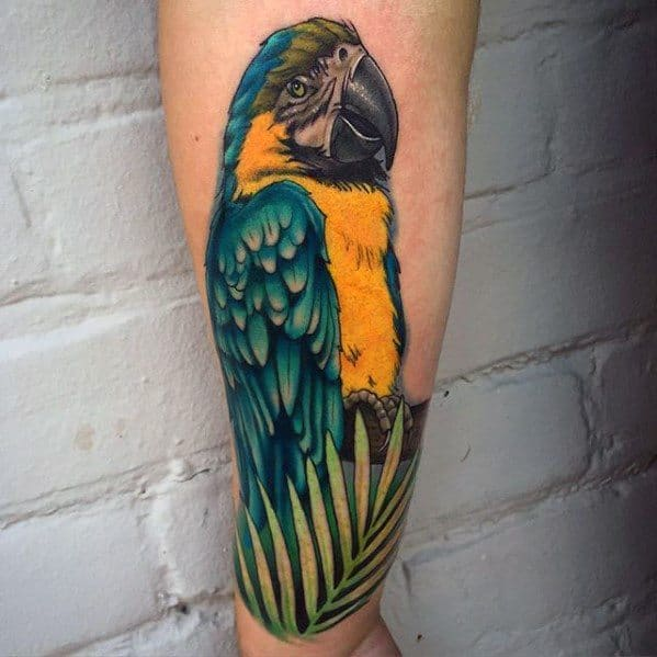 Guys Realistic 3d Parrot Forearm Tattoos