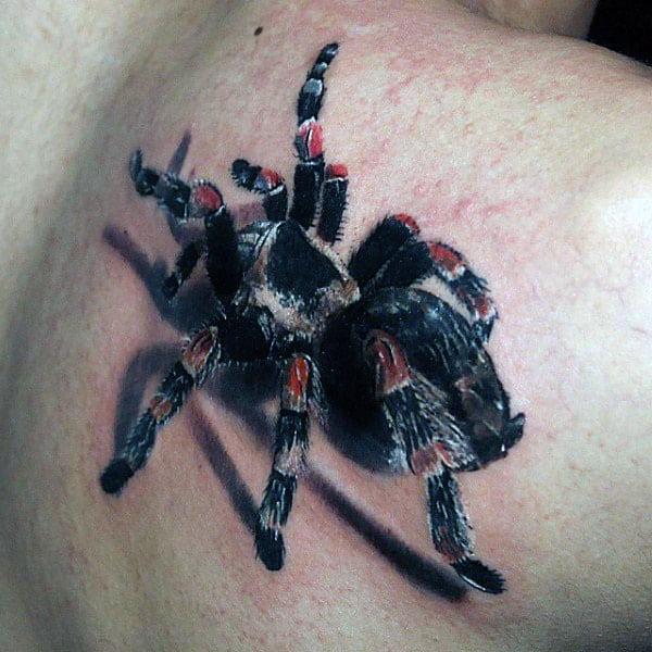 70 tarantula tattoo designs for men