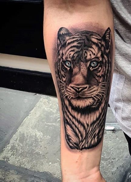 Guy's Roaring Tiger Tattoo On Forearm