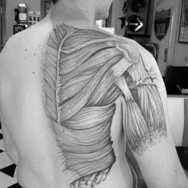 human body diagram tattoo 70 anatomical tattoos for men bodily structure design ideas  70 anatomical tattoos for men bodily