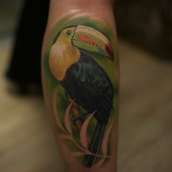 Guys Tattoo Ideas Toucan Designs