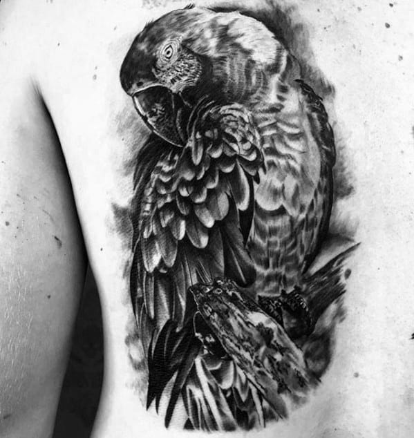 Guys Tattoos With Parrot Design On Back