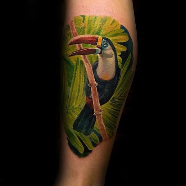 Guys Toucan Tattoo Design Ideas