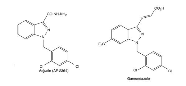 H2 Gamendazole Adjudin Male Birth Control Pill