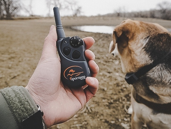 Handheld Transmitter Sportdog Brand Fieldtrainer 425x Ecollars For Dogs Review