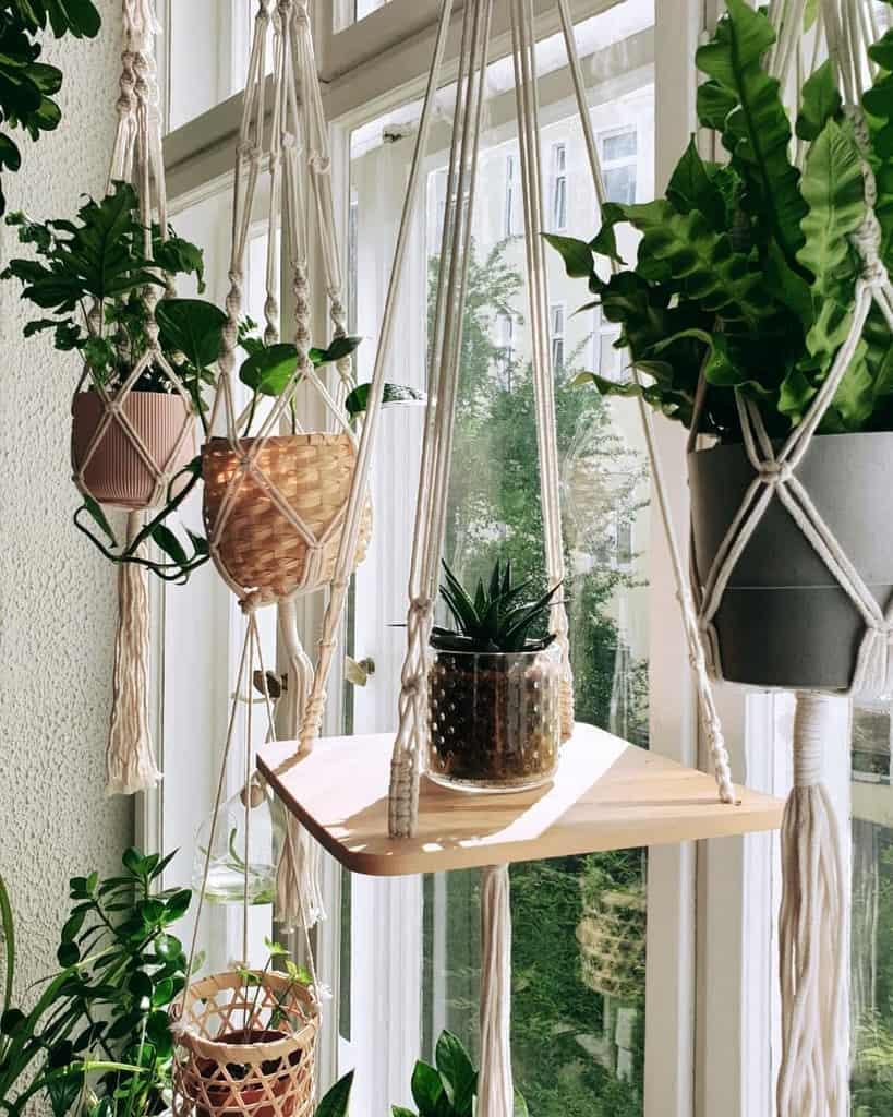 hanging planter indoor garden ideas j9s_jungle