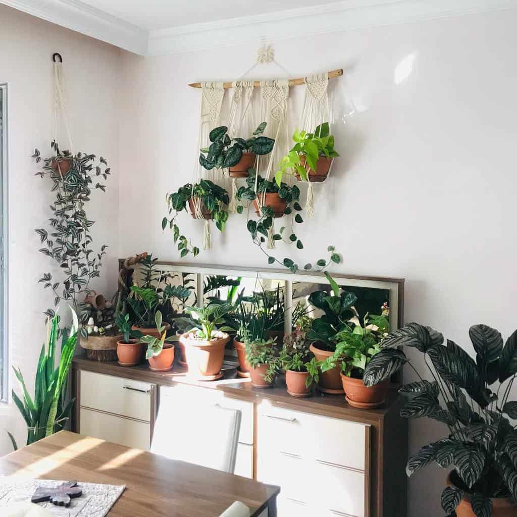 hanging planter indoor garden ideas trhouseplants