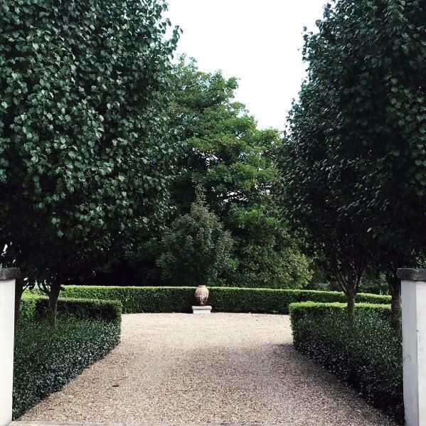 Hedges Landscaping Gravel Driveway Ideas