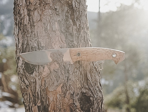 Helle Norway Knives Review Utvaer Slicing Through Tree Bark Outdoors