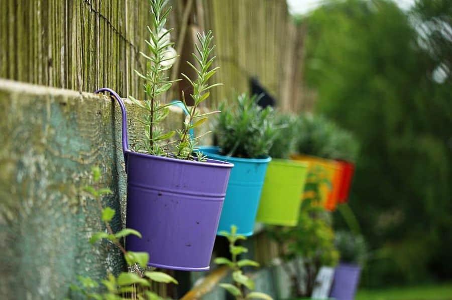 herb and vegetable garden container garden ideas 1