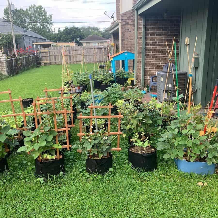herb and vegetable garden container garden ideas anitarosebeans