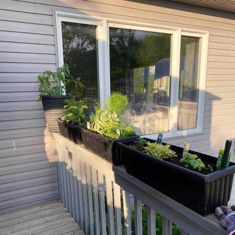 herb and vegetable garden container garden ideas gardeningwithgardner