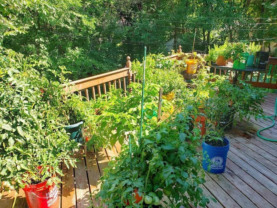 herb and vegetable garden container garden ideas sethpeake45345