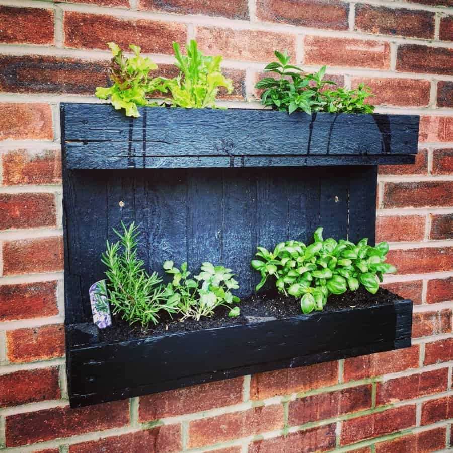 herb garden vertical garden ideas hayeswoodrenovation