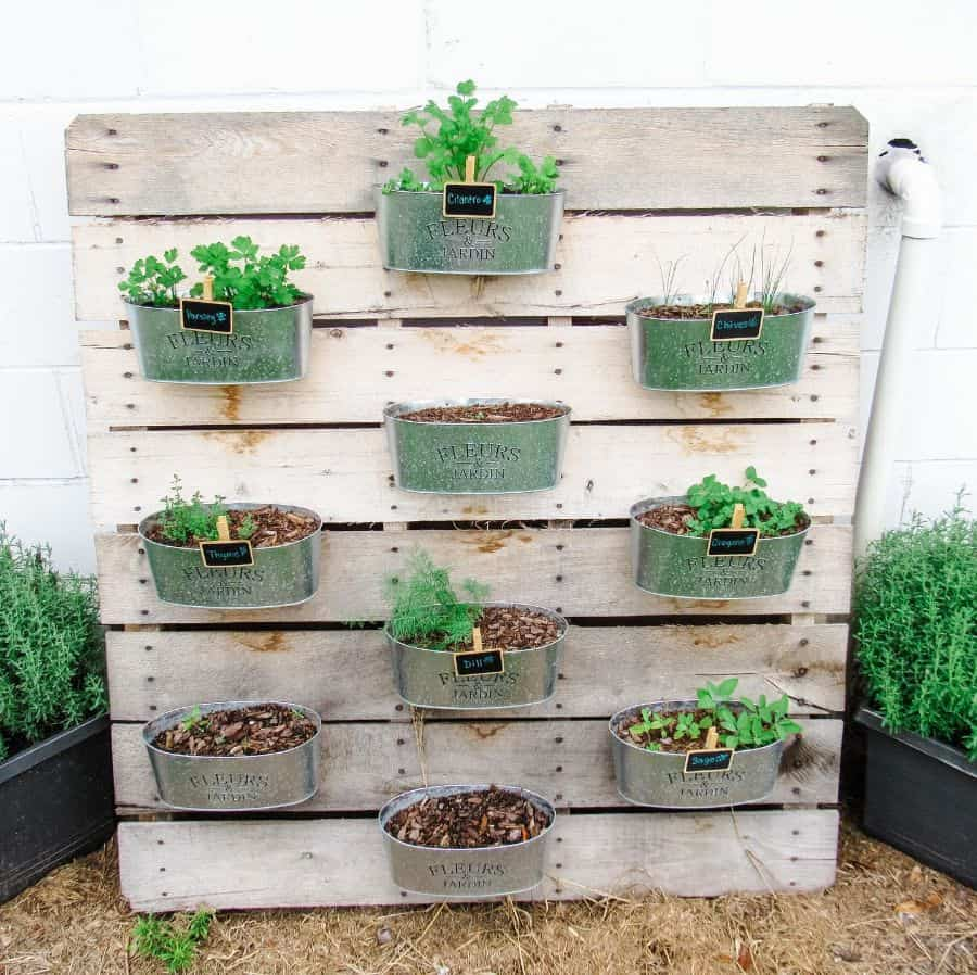 herb garden vertical garden ideas southernmeetsmennonite