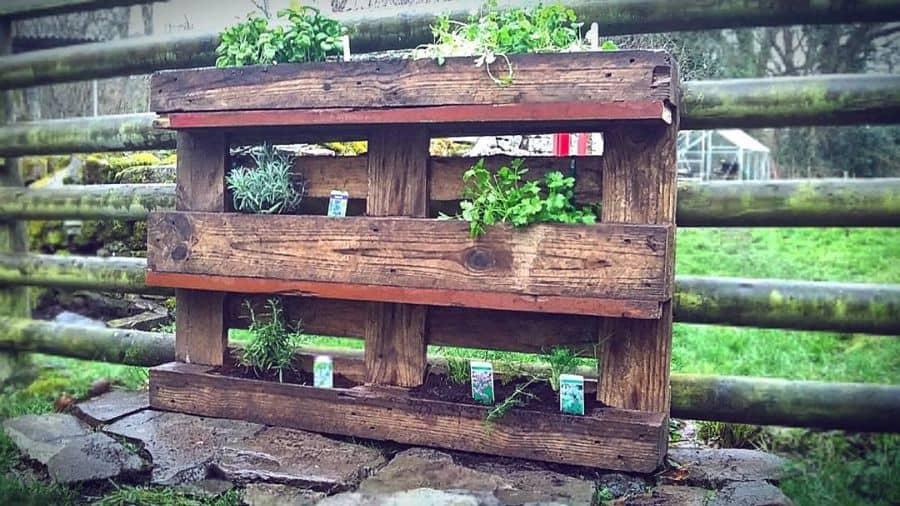 herbs pallet garden ideas bass_face_photography