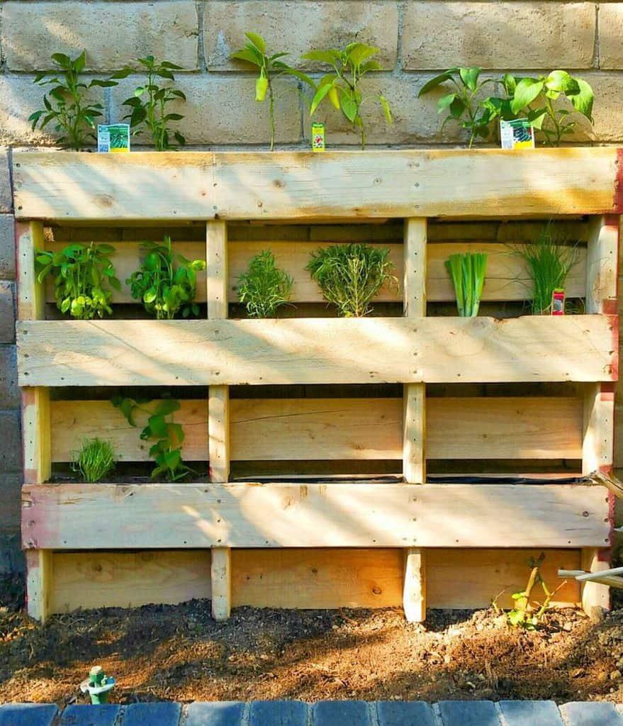 herbs pallet garden ideas food.enabler