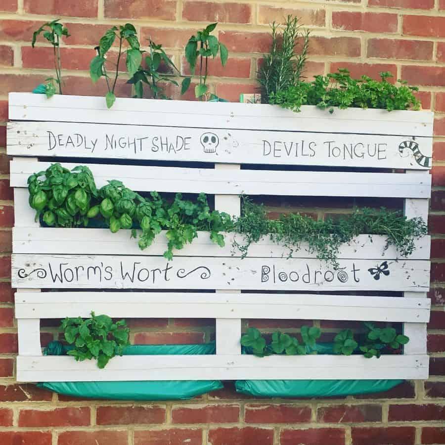herbs pallet garden ideas rocknroll_home