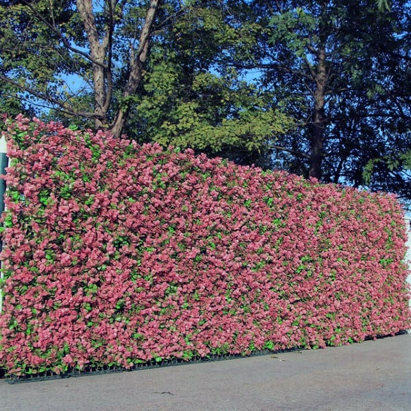 Home Backyard Designs Privacy Flower Hedge Fence
