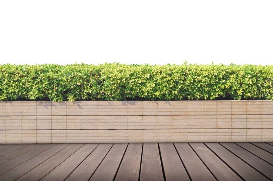 Home Backyard Wooden Walkway Modern