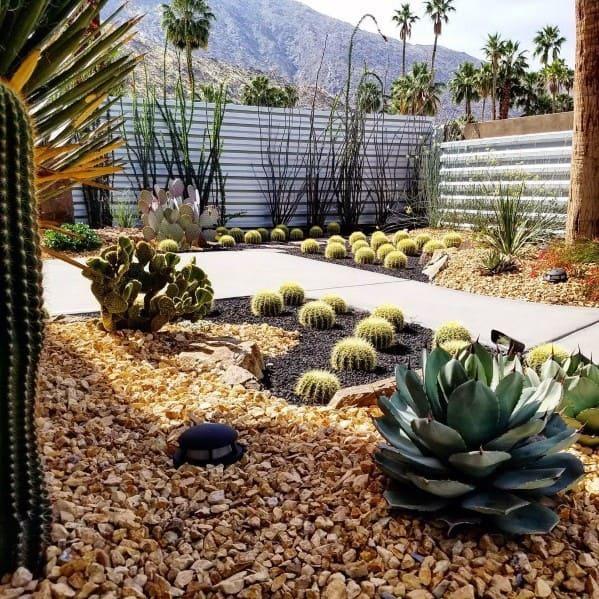 Home Design Ideas Desert Landscaping