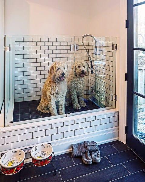 Home Dog Wash Station Design Ideas