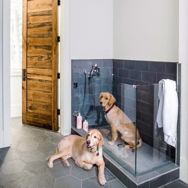 Home Dog Wash Station Interior Design
