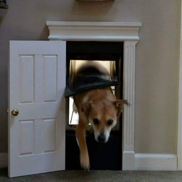 Home Doggy Door Design For Dogs With Mini Door And Trim Around Frame