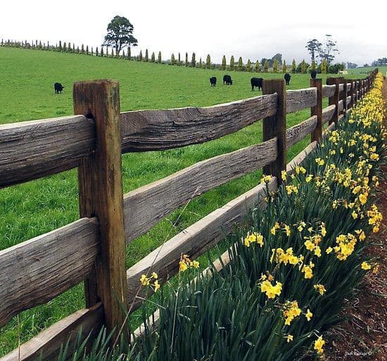 Home Exterior Designs Wood Beam Traditional Fence