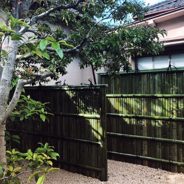 Home Ideas Bamboo Fence
