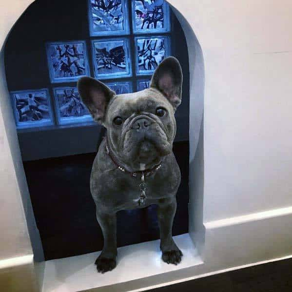 Home Ideas Glass Block Dog House Built Into Wall