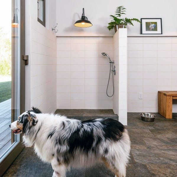 Home Pet Wash Ideas For Mudroom