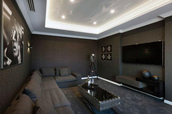 Home Theater With Decor Grey