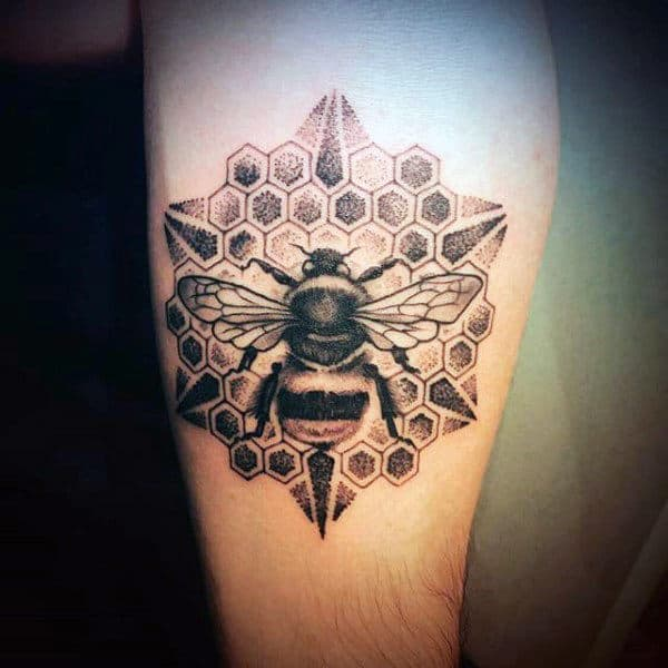 Honeybee On Star Shaped Honeycomb Tattoo Male Upper Arms