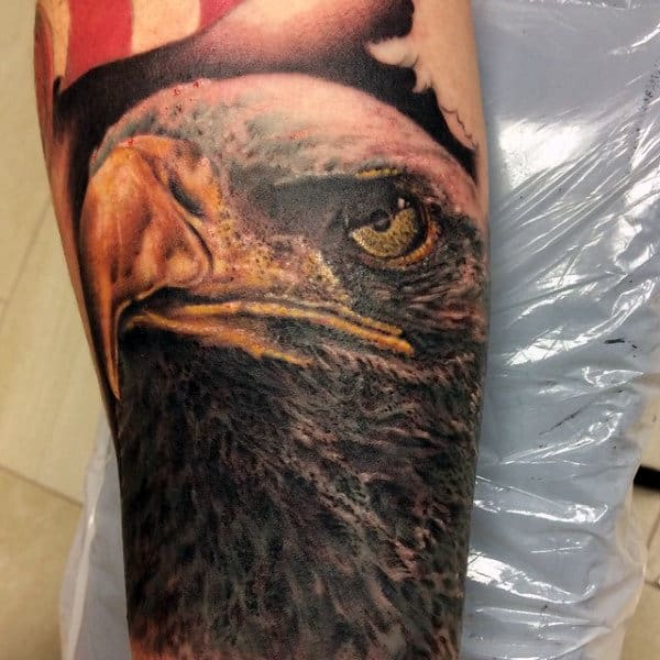 Hooked Yellow Beaked Bald Eagle Tattoo Mens Forearms