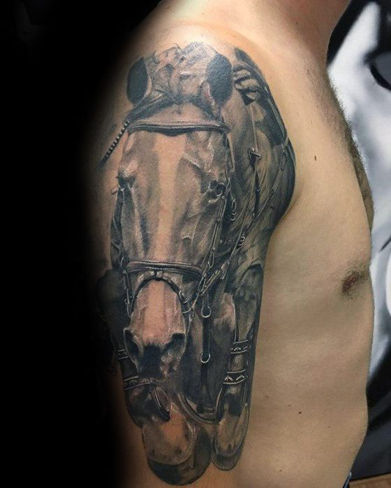 Horse Tattoos For Gentlemen