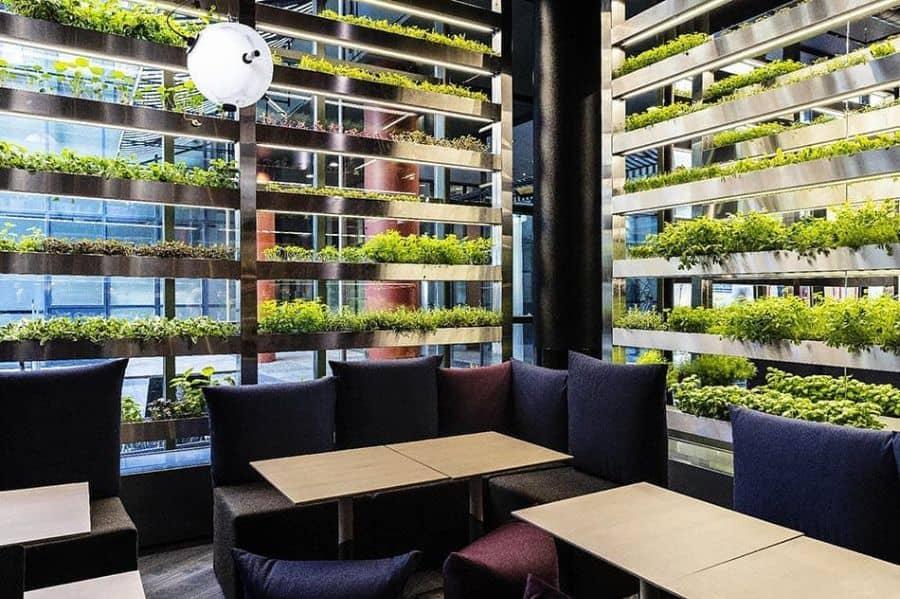hydroponics aquaponics vegetable garden ideas yourgreenlifestore