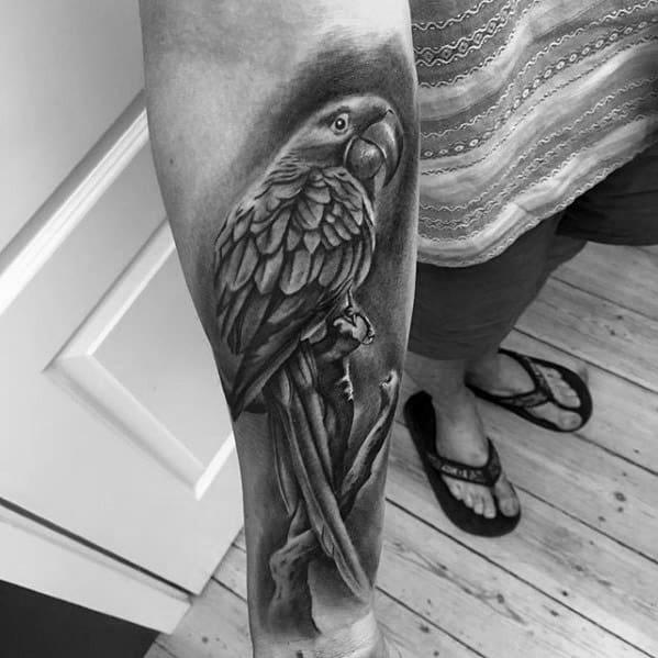 Hyper Realistic Forearm 3d Male Parrot Tattoo