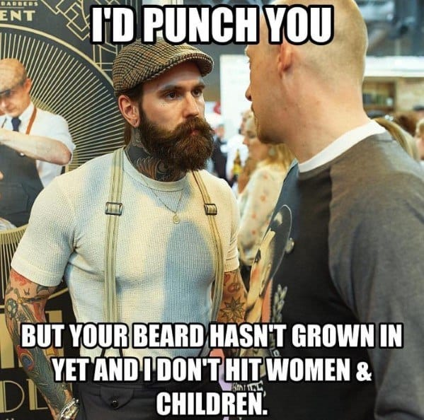I Would Punch You But Your Beard Has Not Grown In Yet Funny Beard Memes