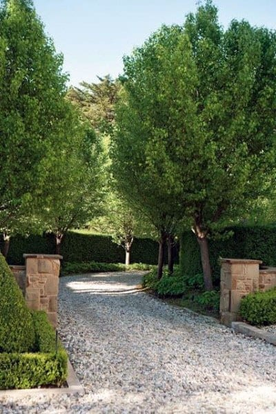 Idea Inspiration Driveway Landscaping Designs