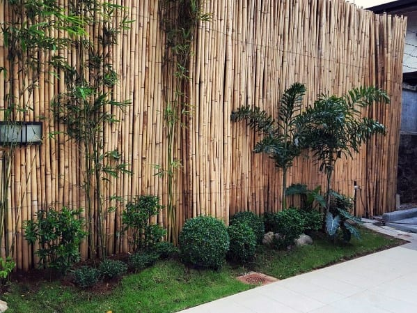Ideas For Bamboo Fence
